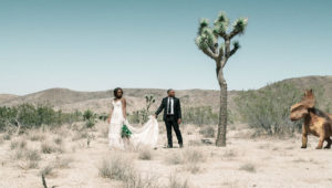 SurReal_wedding_couple_in_desert_dinasour